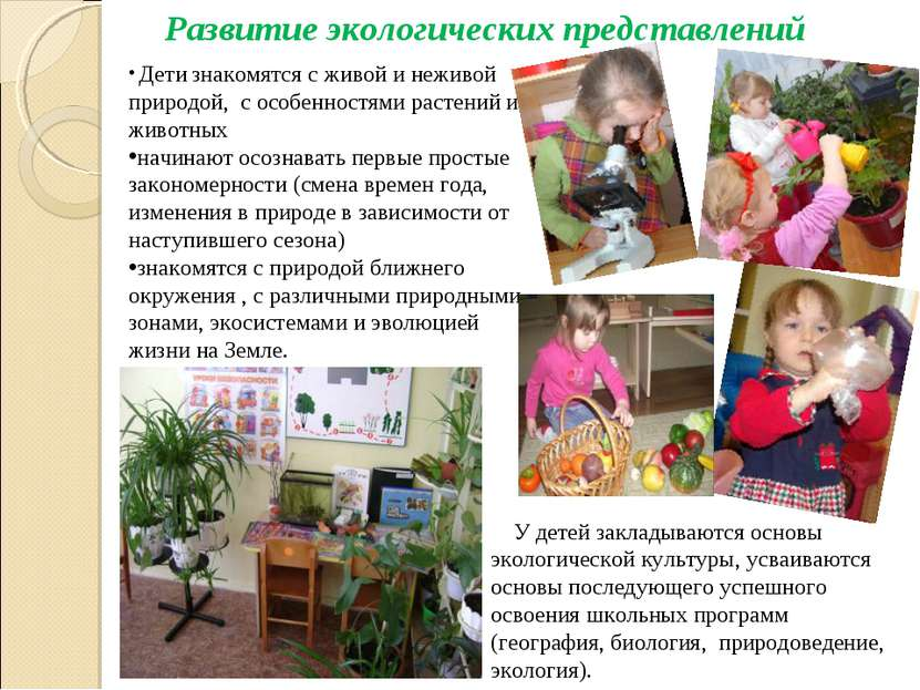 Развитие экологических представлений Дети знакомятся с живой и неживой природ...