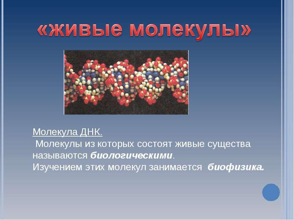 Молекула ДНК. Молекулы из которых состоят живые существа называются биологиче...