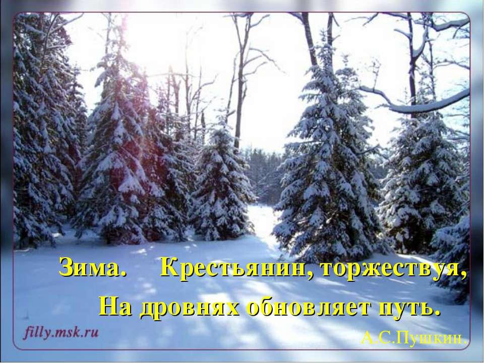 Крестьянин, торжествуя, На дровнях обновляет путь. А.С.Пушкин. Зима.