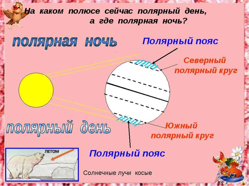 Полярный пояс Полярный пояс Южный полярный круг Северный полярный круг На как...