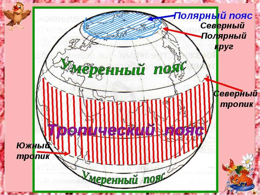 Полярный пояс Северный Полярный круг Северный тропик Южный тропик