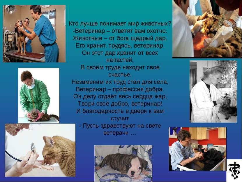 Кто лучше понимает мир животных? -Ветеринар – ответят вам охотно. Животные – ...