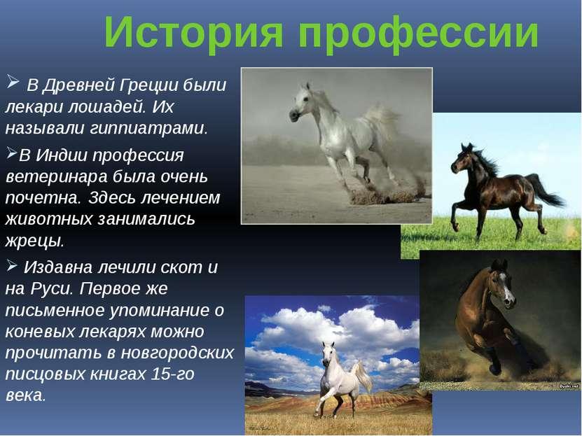 В Древней Греции были лекари лошадей. Их называли гиппиатрами. В Индии профес...