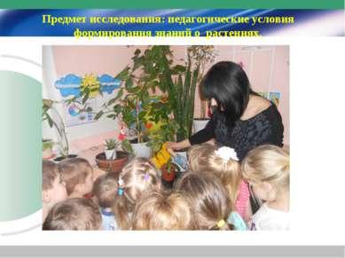 Предмет исследования: педагогические условия формирования знаний о растениях.