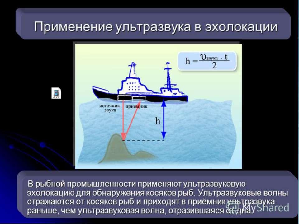 Свойства звука. Способ определения расстояния до предметов называется Эхолока...