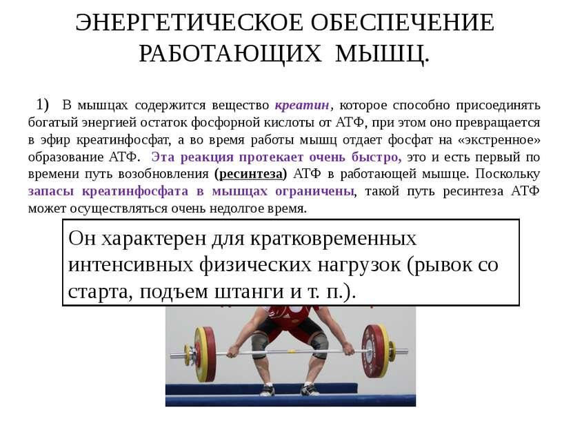 ЭНЕРГЕТИЧЕСКОЕ ОБЕСПЕЧЕНИЕ РАБОТАЮЩИХ МЫШЦ. 1) В мышцах содержится вещество к...