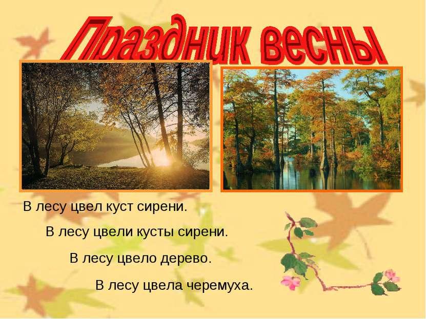 В лесу цвели кусты сирени. В лесу цвело дерево. В лесу цвел куст сирени. В ле...