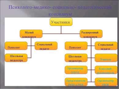 Психолого-медико- социально- педагогический консилиум Участники Малый консили...