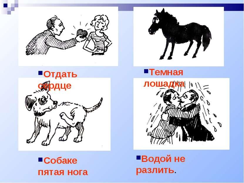 Отдать сердце Темная лошадка Собаке пятая нога Водой не разлить.