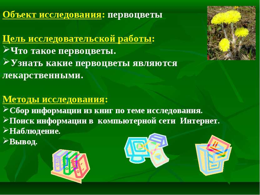Объект исследования: первоцветы Цель исследовательской работы: Что такое перв...