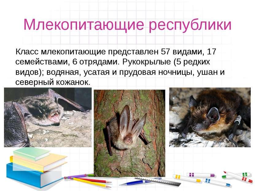 Млекопитающие республики Класс млекопитающие представлен 57 видами, 17 семейс...