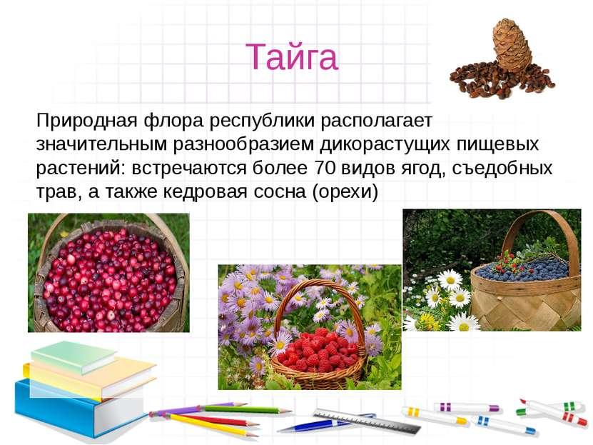 Тайга Природная флора республики располагает значительным разнообразием дикор...