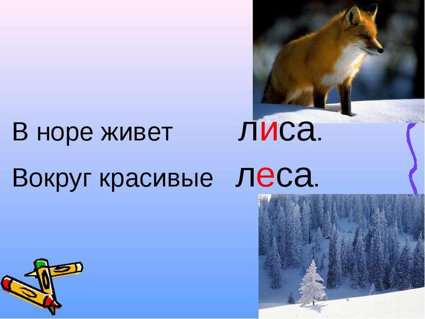 В норе живет лиса. Вокруг красивые леса.