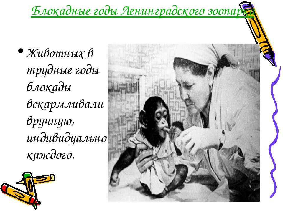 Блокадные годы Ленинградского зоопарка Животных в трудные годы блокады вскарм...