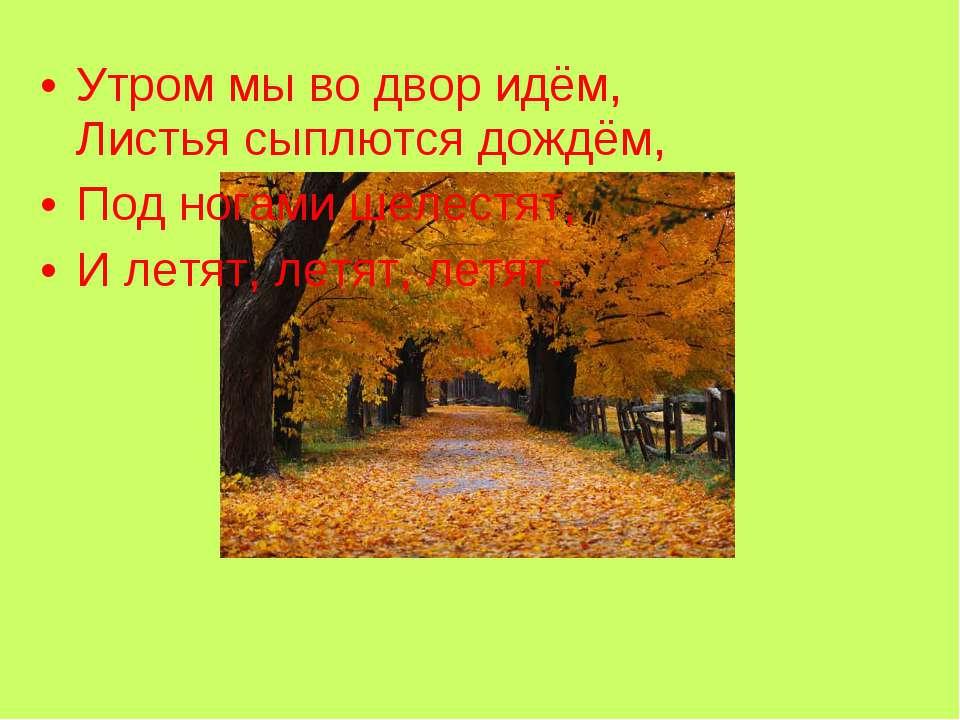 Утром мы во двор идём, Листья сыплются дождём, Под ногами шелестят, И летят, ...