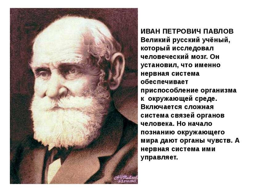 ИВАН ПЕТРОВИЧ ПАВЛОВ Великий русский учёный, который исследовал человеческий ...