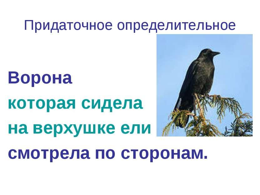 Придаточное определительное Ворона которая сидела на верхушке ели смотрела по...