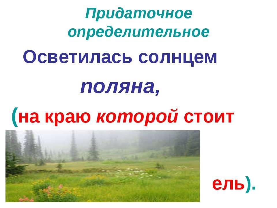 Придаточное определительное Осветилась солнцем поляна, (на краю которой стоит...