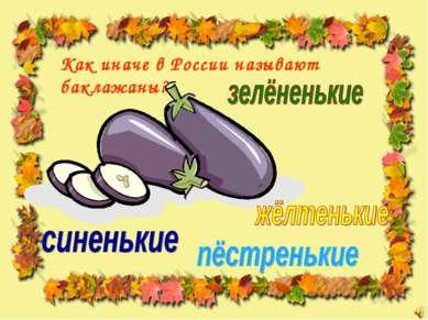 Как иначе в России называют баклажаны?