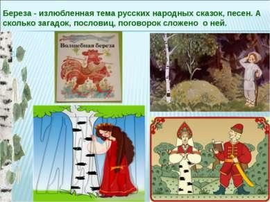 Береза - излюбленная тема русских народных сказок, песен. А сколько загадок, ...