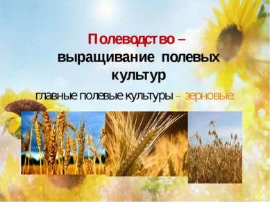 Полеводство – выращивание полевых культур главные полевые культуры – зерновые: