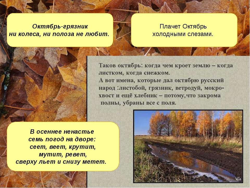 Октябрь-грязник ни колеса, ни полоза не любит. Плачет Октябрь холодными слеза...