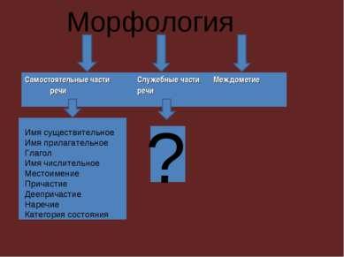 Морфология Имя существительное Имя прилагательное Глагол Имя числительное Мес...