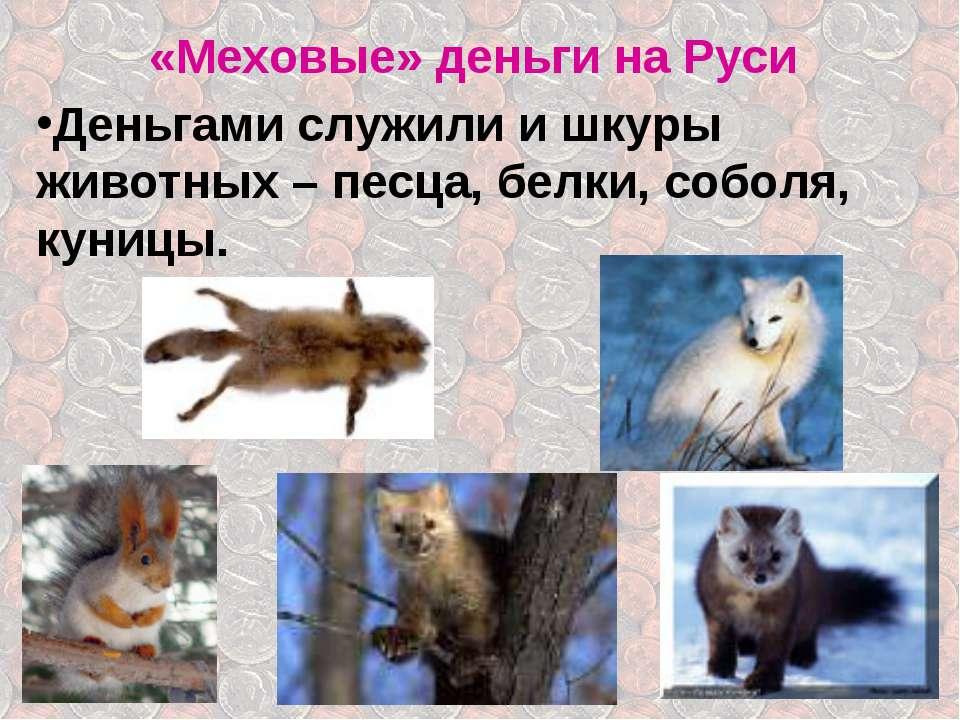 «Меховые» деньги на Руси Деньгами служили и шкуры животных – песца, белки, со...
