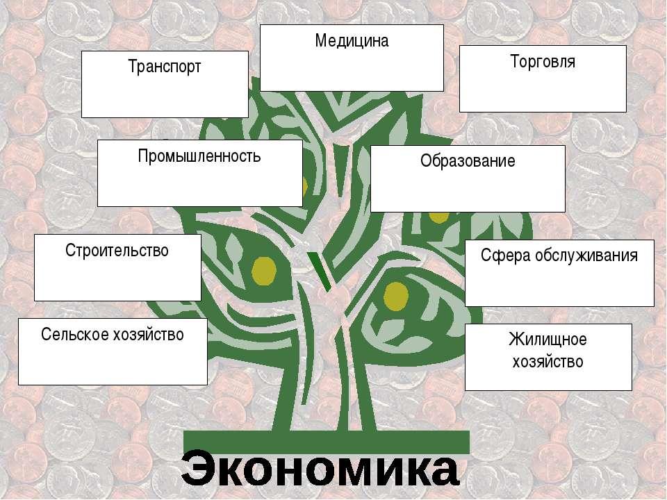 Сельское хозяйство Строительство Промышленность Транспорт Медицина Торговля О...