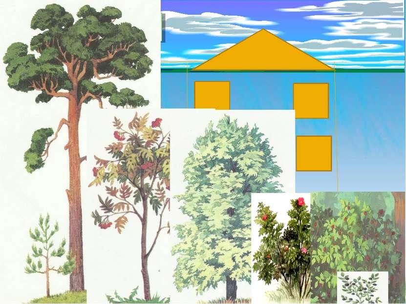 Модель многоэтажного дома