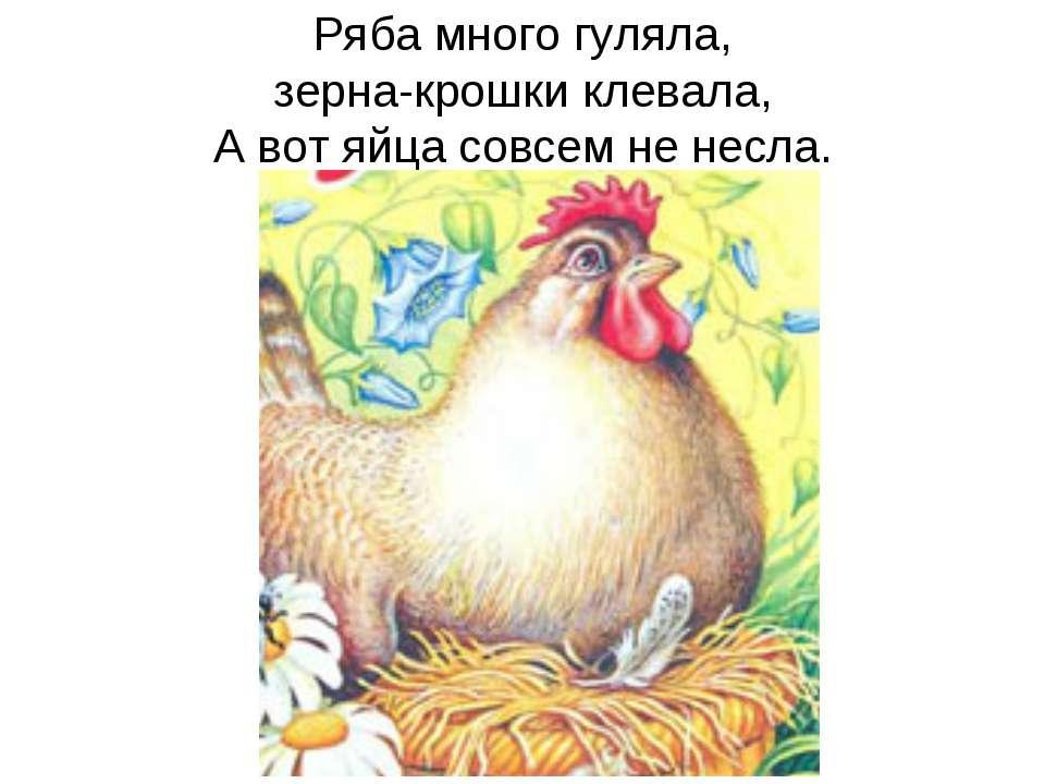 Ряба много гуляла, зерна-крошки клевала, А вот яйца совсем не несла.