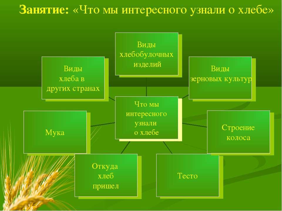 Занятие: «Что мы интересного узнали о хлебе»
