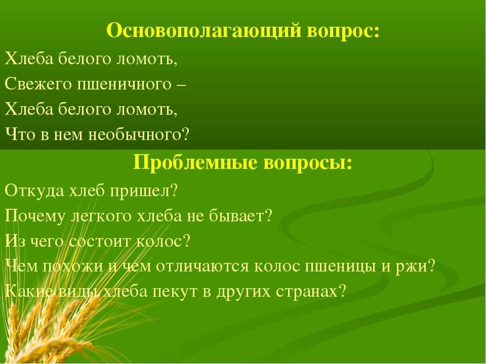 Основополагающий вопрос: Хлеба белого ломоть, Свежего пшеничного – Хлеба бело...