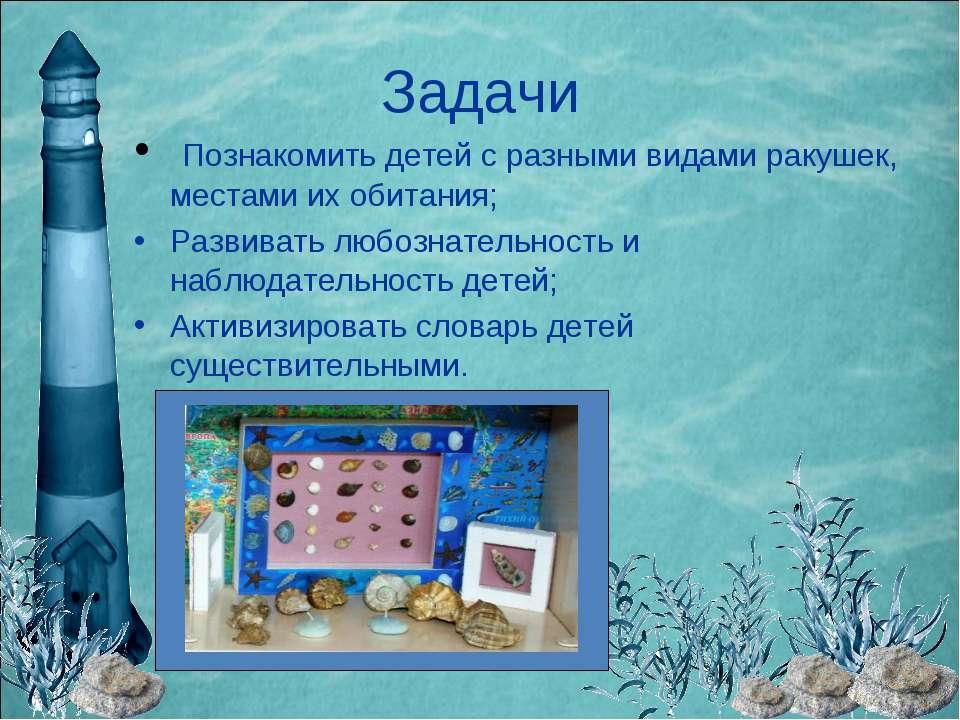 Задачи Познакомить детей с разными видами ракушек, местами их обитания; Разви...