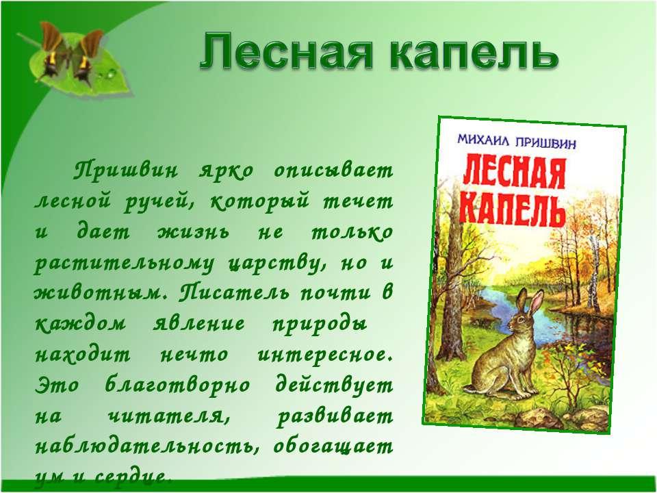 Пришвин ярко описывает лесной ручей, который течет и дает жизнь не только рас...