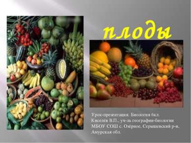 плоды Урок-презентация. Биология 6кл. Киселёв В.П., уч-ль географии-биологии ...