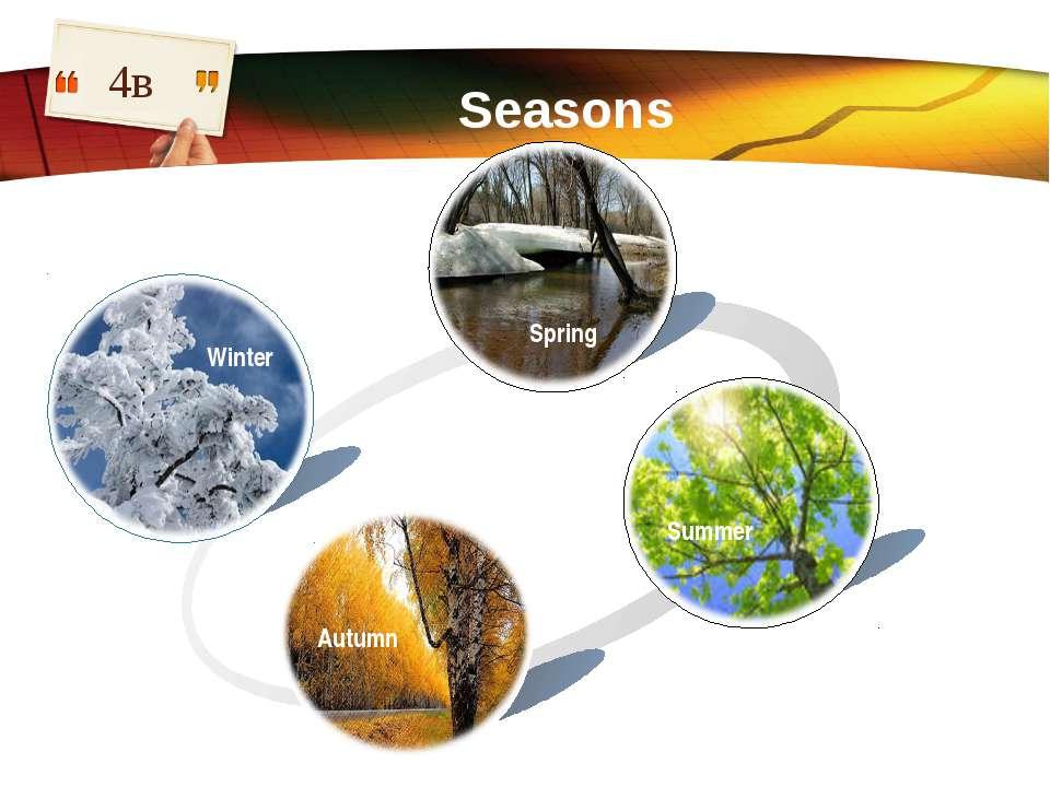 4в Seasons Winter Spring Summer Autumn LOGO