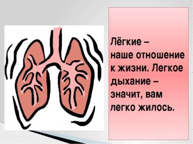 Лёгкие – наше отношение к жизни. Легкое дыхание – значит, вам легко жилось.
