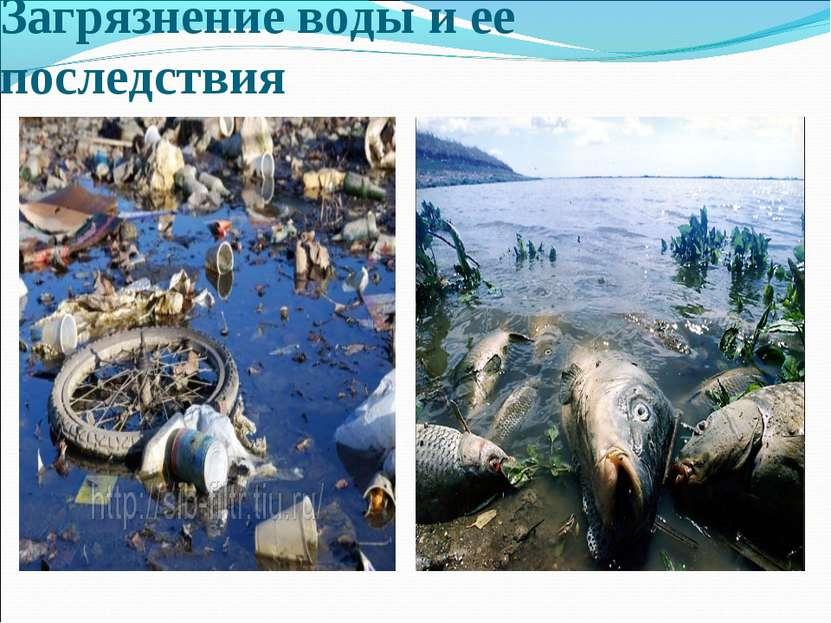 Загрязнение воды и ее последствия