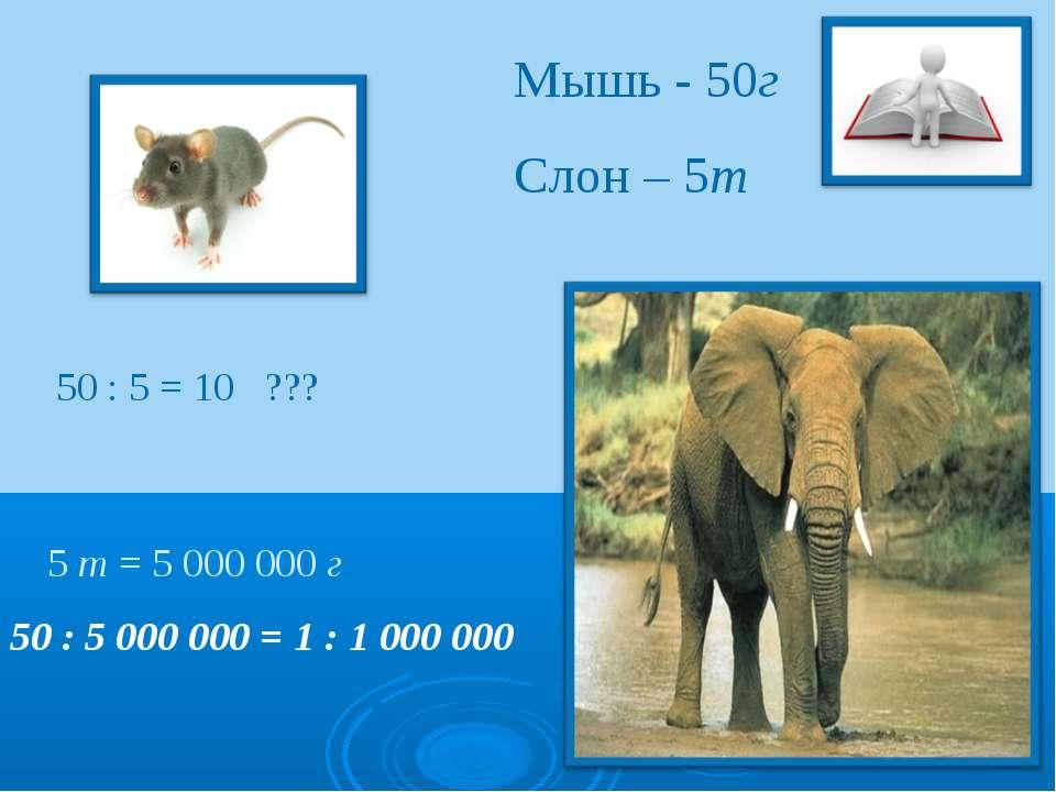 Мышь - 50г Слон – 5т 50 : 5 = 10 ??? 50 : 5 000 000 = 1 : 1 000 000 5 т = 50...