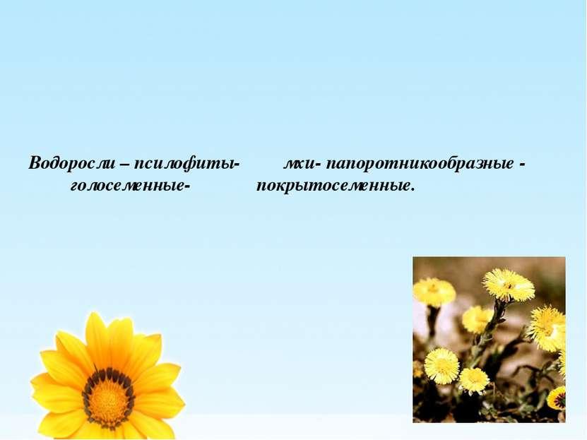 Водоросли – псилофиты- мхи- папоротникообразные - голосеменные- покрытосеменные.