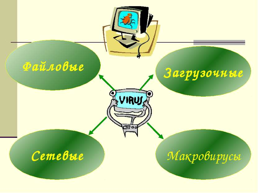 Файловые Сетевые Макровирусы Загрузочные