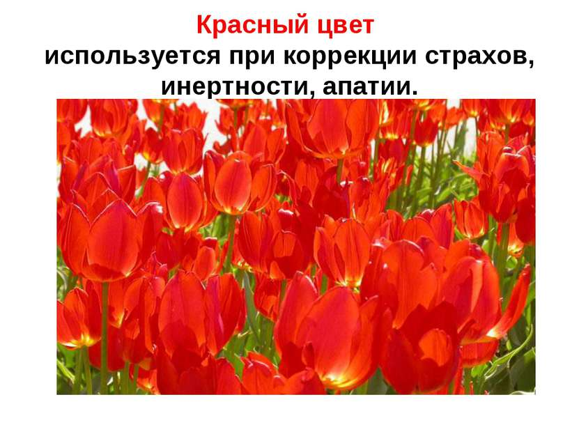 Красный цвет используется при коррекции страхов, инертности, апатии.