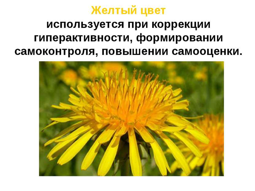 Желтый цвет используется при коррекции гиперактивности, формировании самоконт...