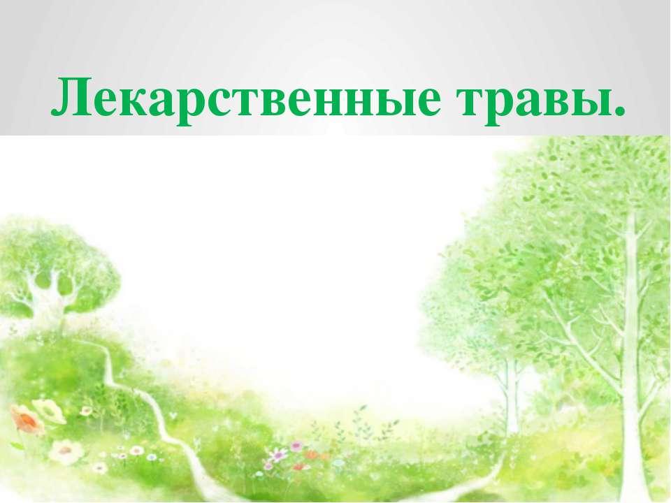 Лекарственные травы.