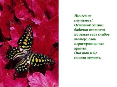 Ничего не случилось! Остаток жизни бабочка волочила по земле свое слабое тель...