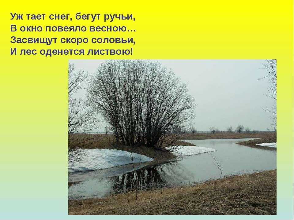 Уж тает снег, бегут ручьи, В окно повеяло весною… Засвищут скоро соловьи, И л...