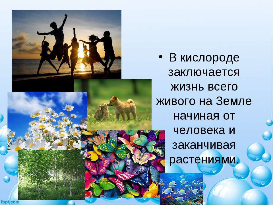 В кислороде заключается жизнь всего живого на Земле начиная от человека и зак...