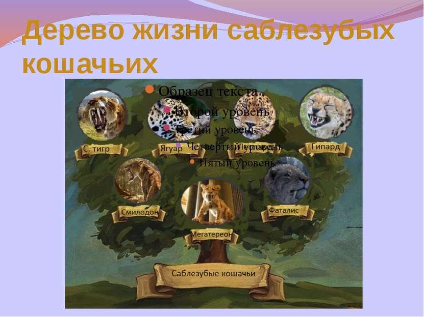 Дерево жизни саблезубых кошачьих