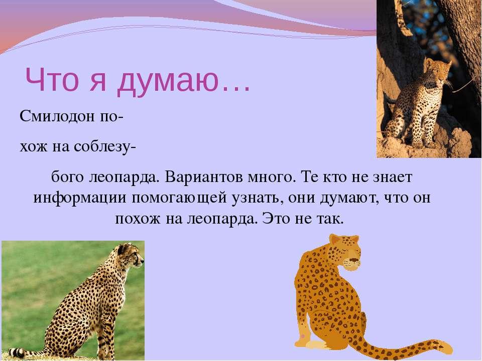 Что я думаю… Смилодон по- хож на соблезу- бого леопарда. Вариантов много. Те ...